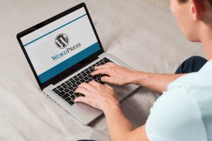 how to setup online store using wordpress