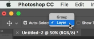 enable layer option